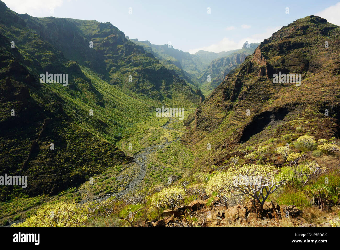 Barranco de Santiago, La Gomera, Kanarische Inseln, Spanien, Europa Stockfoto