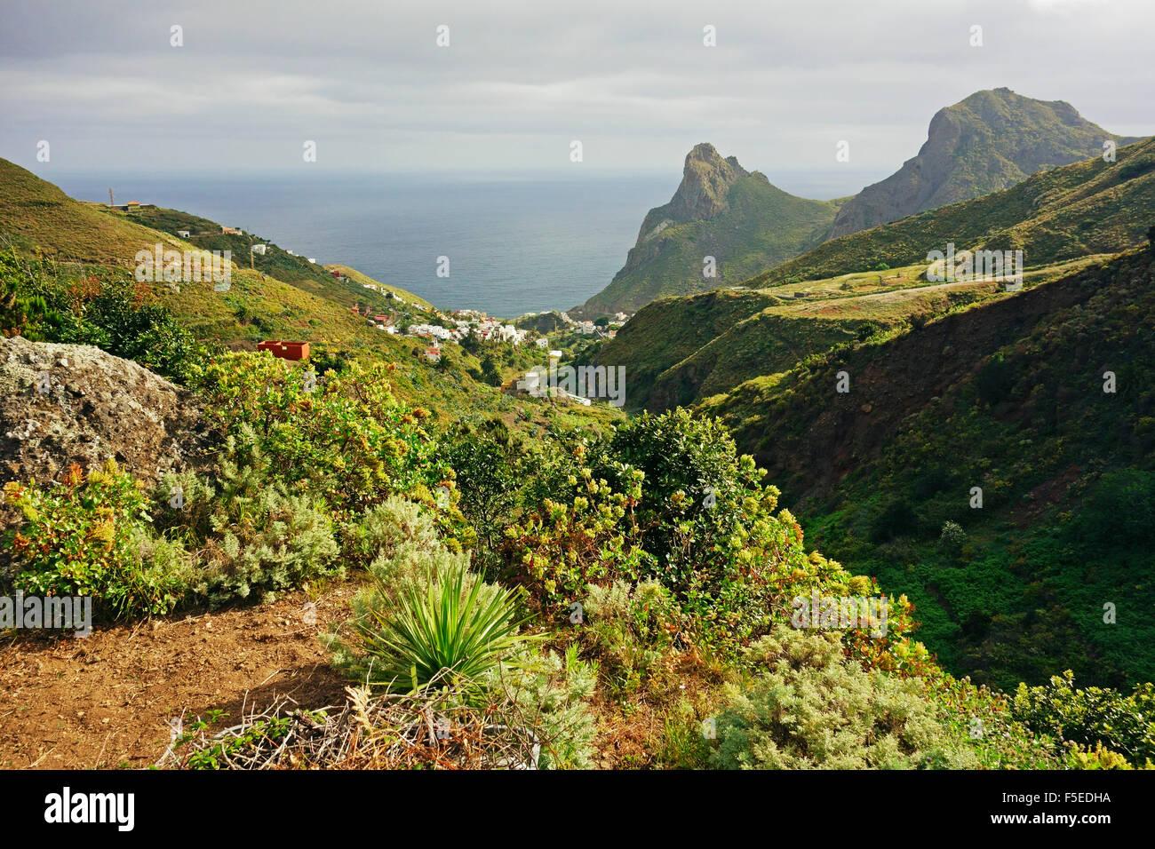 Taganana Dorf, Anaga-Gebirge, Teneriffa, Kanarische Inseln, Spanien, Atlantik, Europa Stockfoto