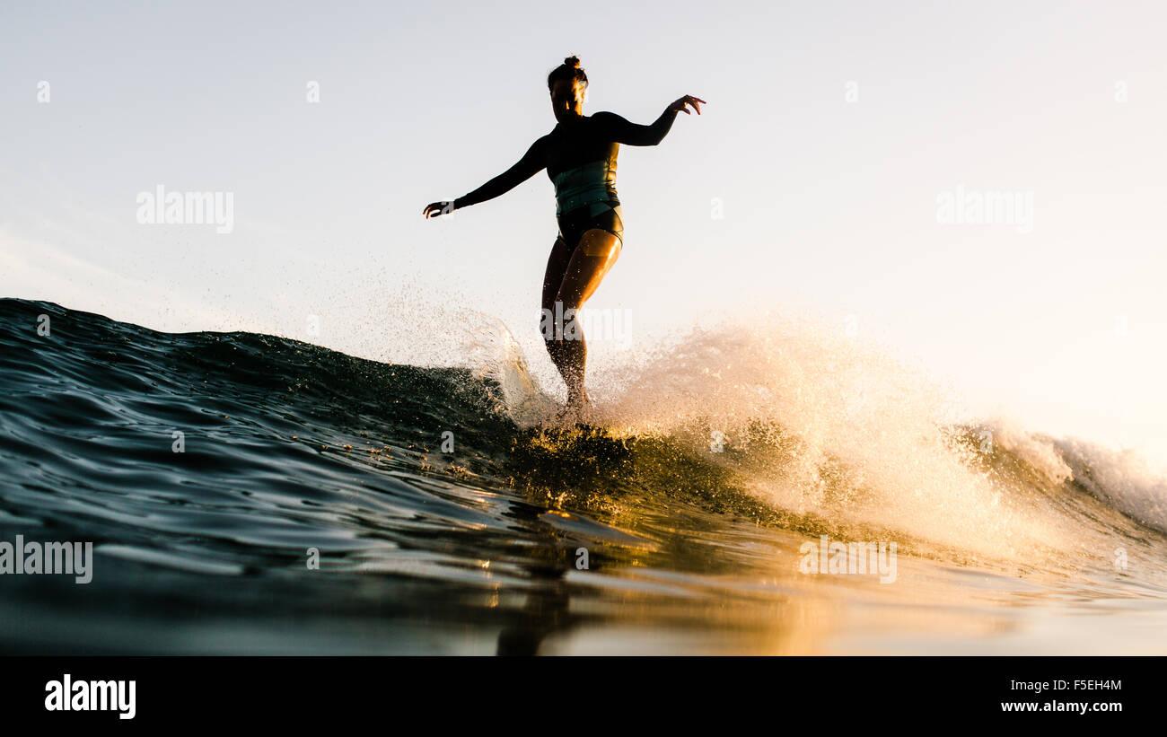 Frauen stehen auf Surfbrett, Malibu, Kalifornien, USA Stockbild