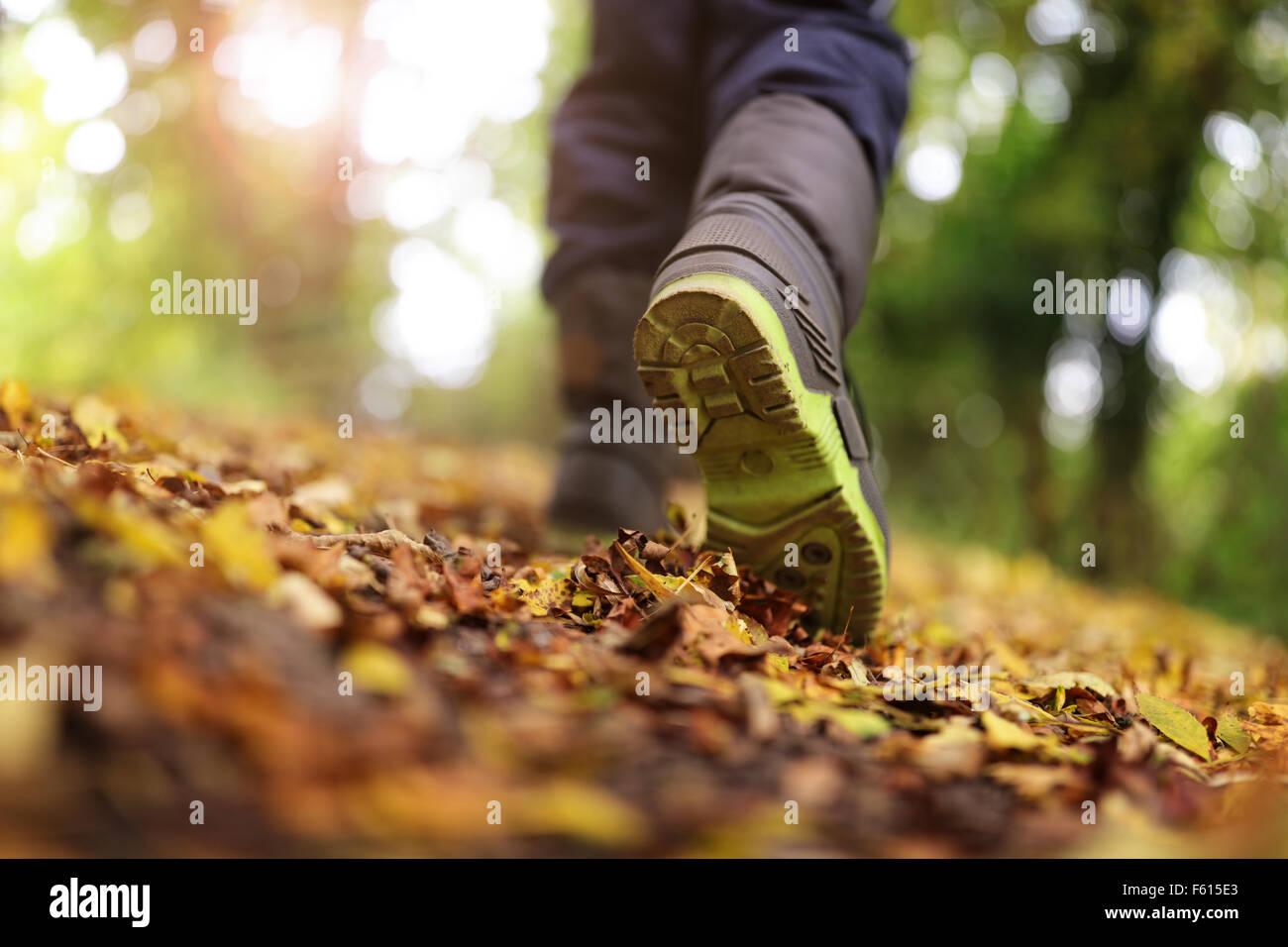 Wandern im Herbst und winter Stockbild