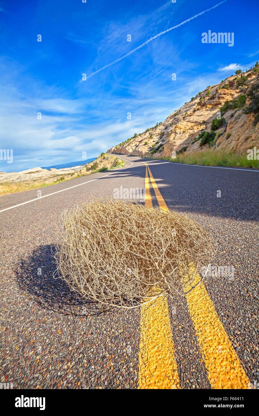 Tumbleweed auf einer leeren Straße, Reise-Konzept-Bild, geringe Schärfentiefe, USA. Stockbild
