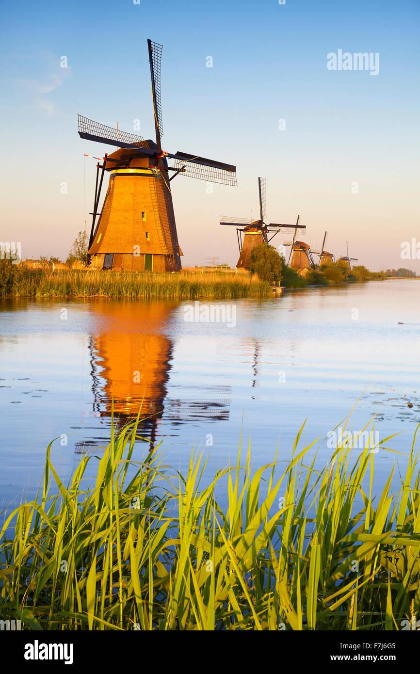 Windmühlen von Kinderdijk - Holland Niederlande Stockbild