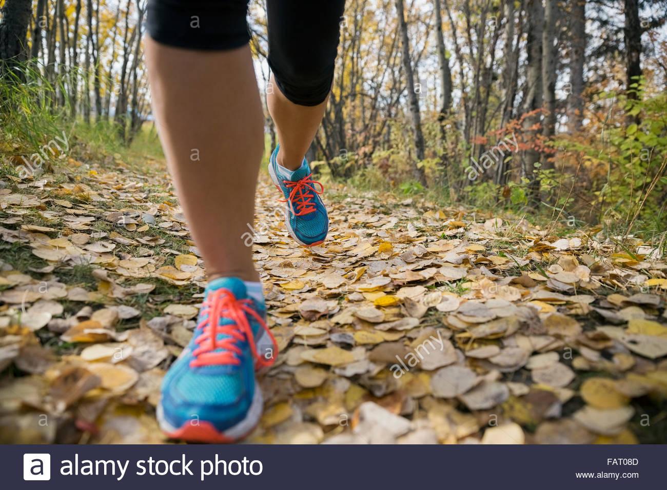 Nahaufnahme der Frau die Füße Joggen auf Herbst Weg Stockbild