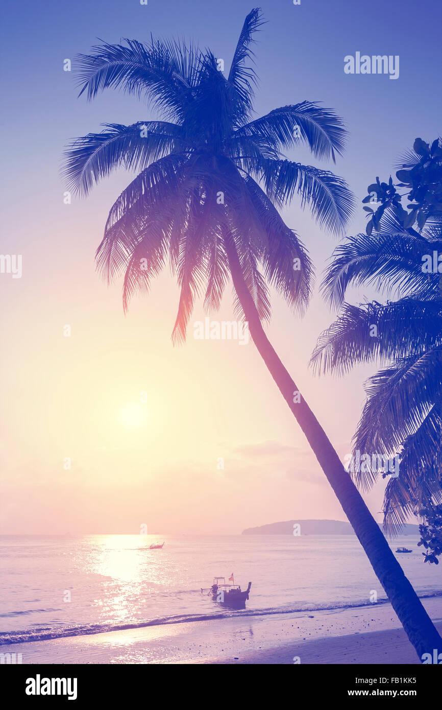 Vintage getönten tropischen Strand bei Sonnenuntergang. Stockbild