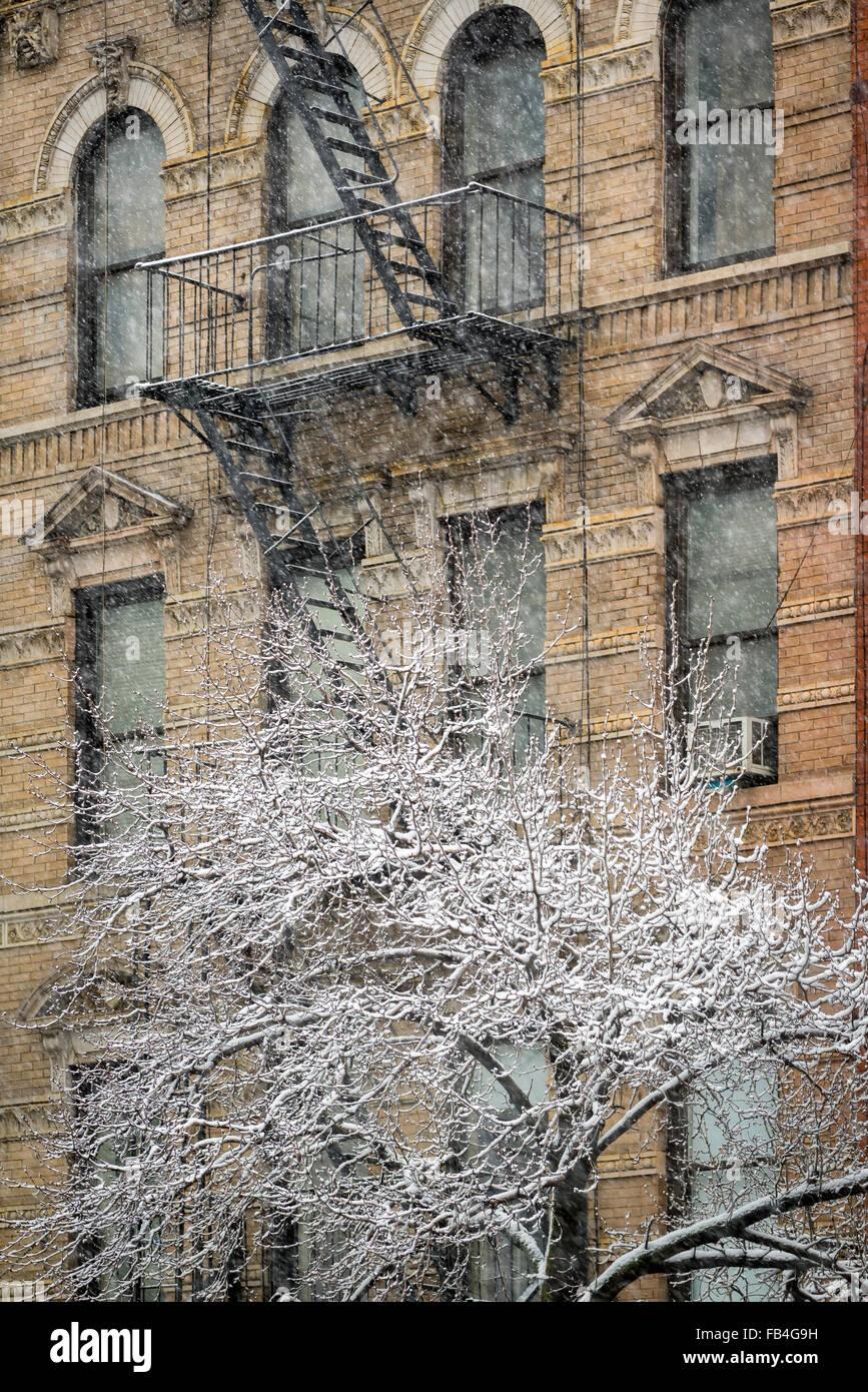 Chelsea Gebäude mit Feuerleiter und Schnee bedeckt Baum, Wintersturm, Manhattan, New York City Stockbild