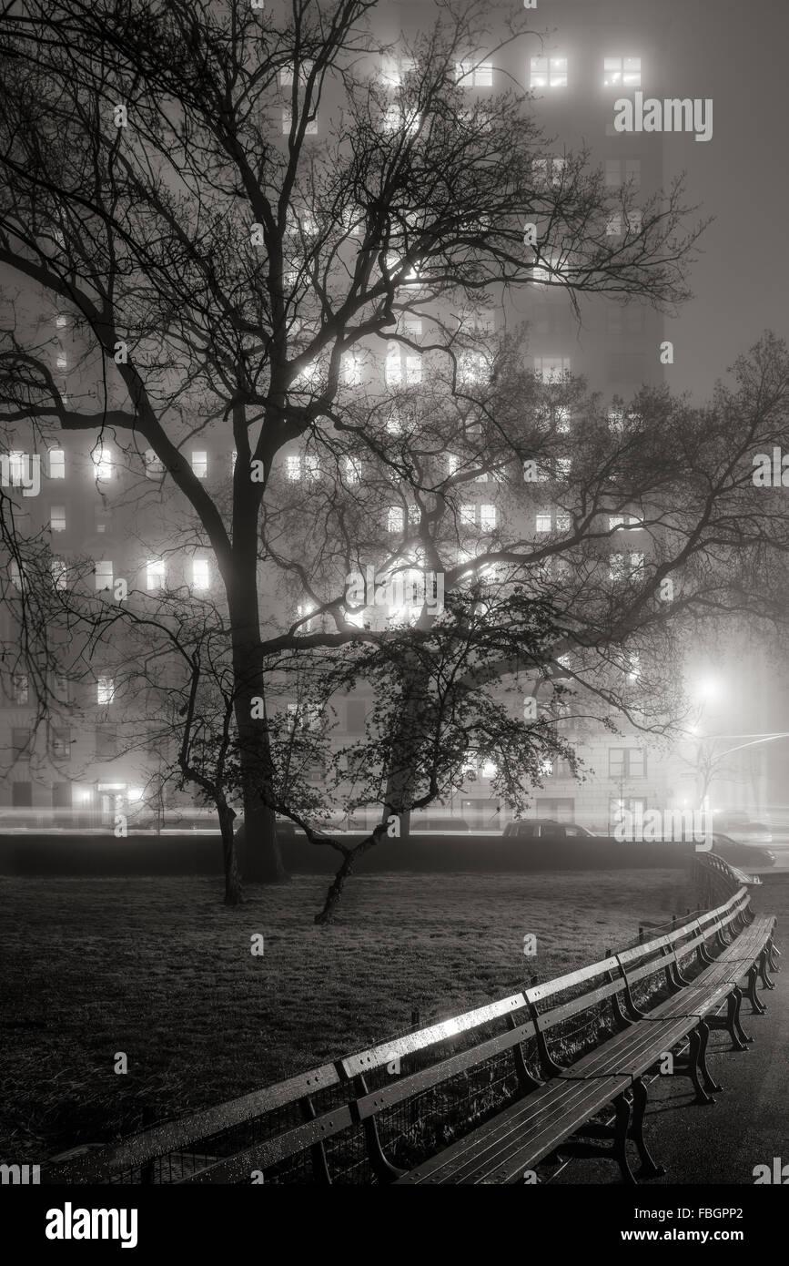 Nebel im Central Park in der Nacht. Bäume werden Silhouetten, beleuchtet von den Hochhäusern der Upper Stockbild