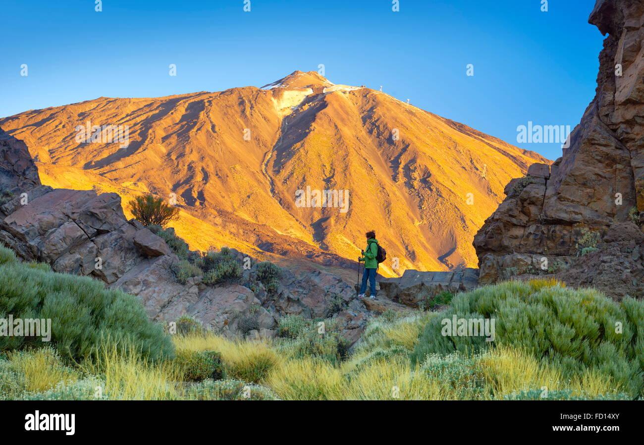 Tourismus im Nationalpark Teide, Teneriffa, Kanarische Inseln, Spanien Stockbild
