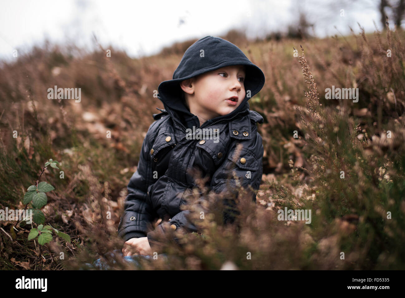 Kleiner Junge Haube sitzt in der Natur Stockbild