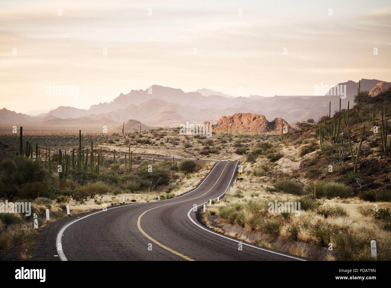 Kurvenreiche Straße durch die mexikanische Wüste von Baja California Stockbild