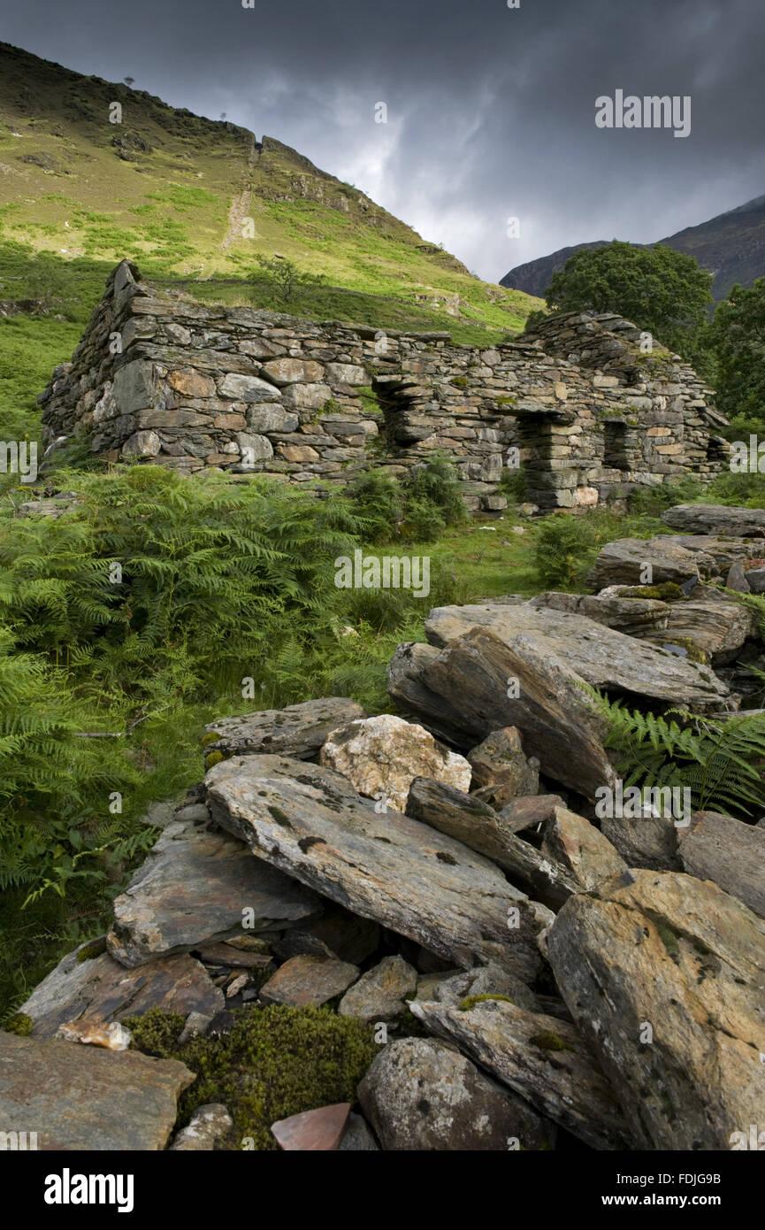A ruiniert mir Gebäude mit Clogwyn Brith darüber hinaus mit der Steigung Kerbe noch sichtbar auf Hafod Stockbild
