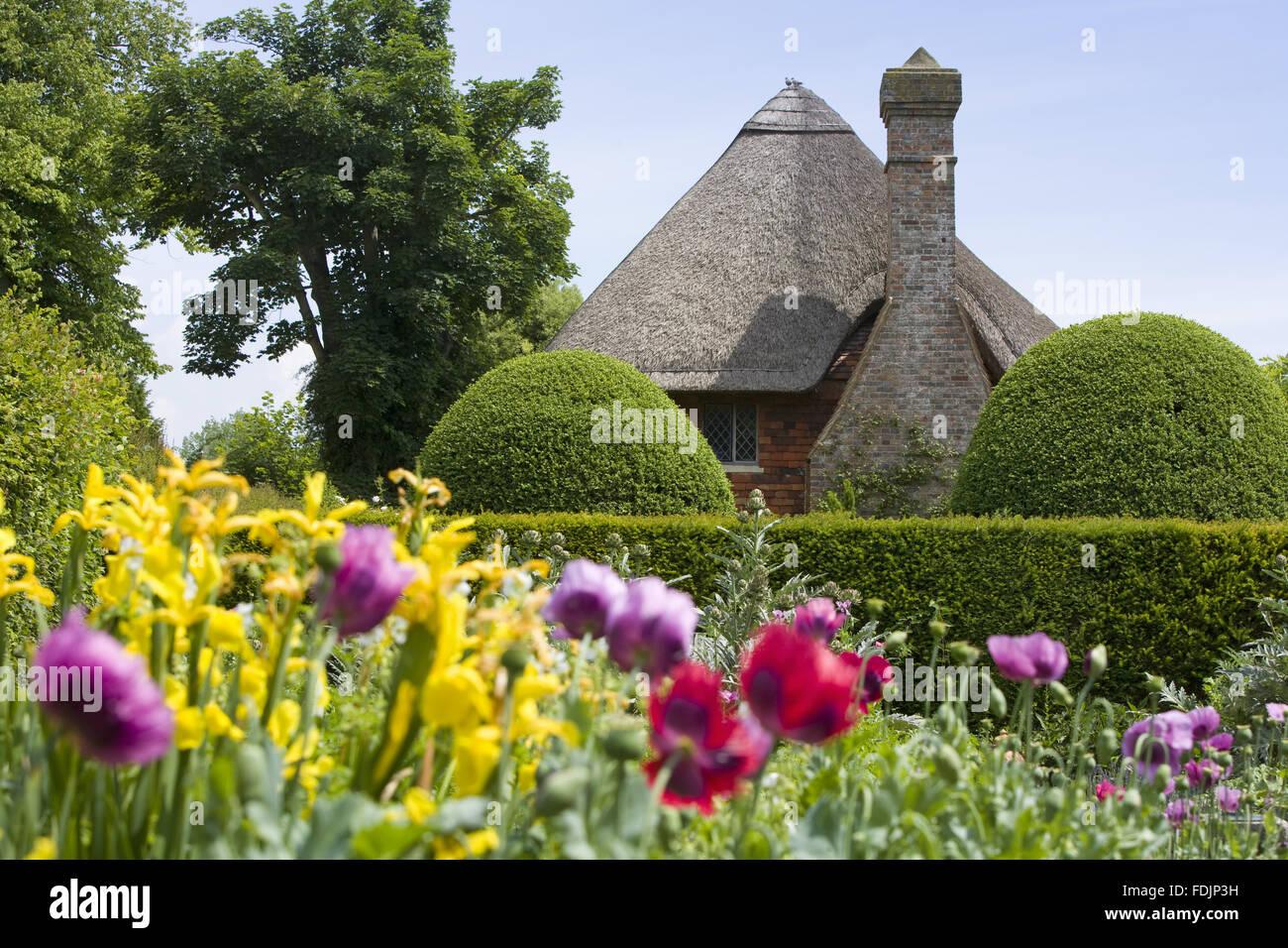 Bunte Mohnblumen in der Cottage-Garten im Touristenort Klerus House, einem vierzehnten Jahrhundert Wealden Halle Stockbild