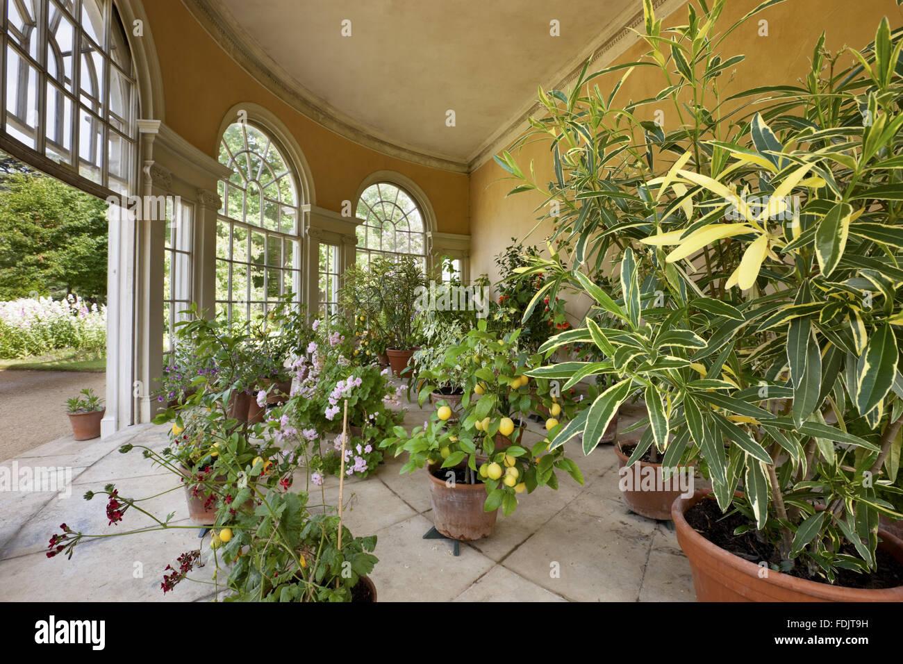 Im Inneren der halbrunden Gartenhaus auf dem Gelände Vergnügen am Osterley, Middlesex. Das Garden House Stockbild