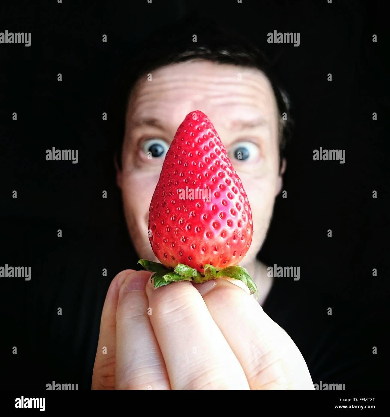Porträt des Mannes halten Erdbeer vor schwarzem Hintergrund Stockbild