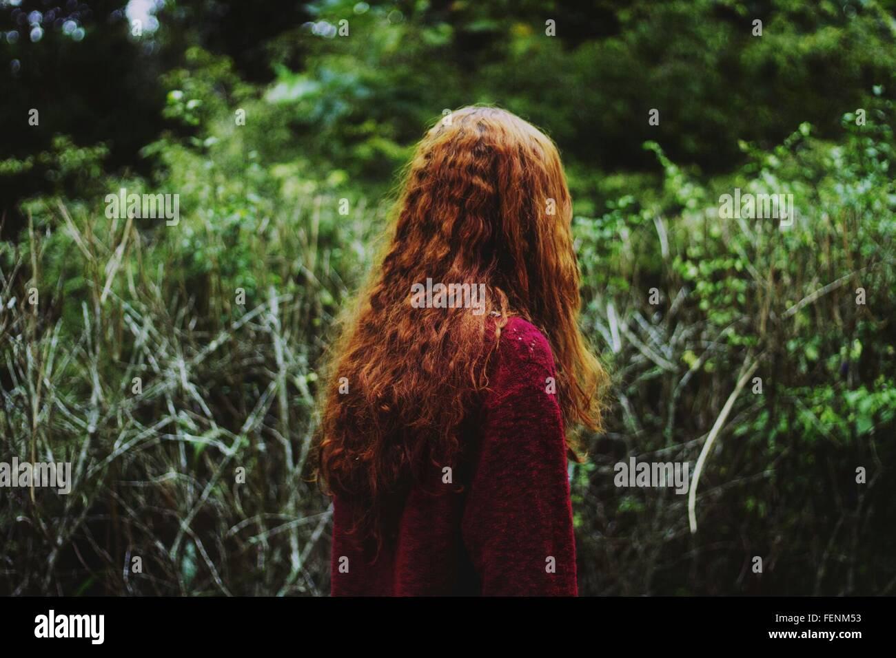Rückansicht der Frau im Wald Stockbild