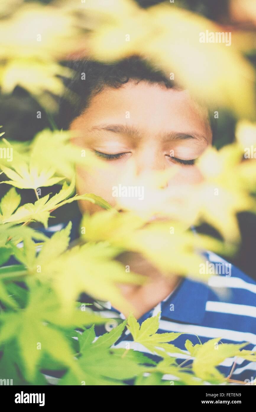 Junge mit geschlossenen Augen gesehen durch Pflanzen Stockbild