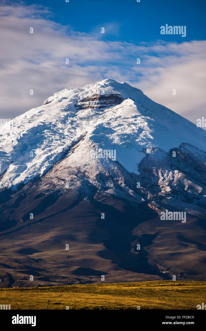Cotopaxi VoRMcano gRMacier bedeckt 5897m Gipfel, Cotopaxi NationaRM Park, Provinz Cotopaxi in Ecuador, Südamerika Stockbild