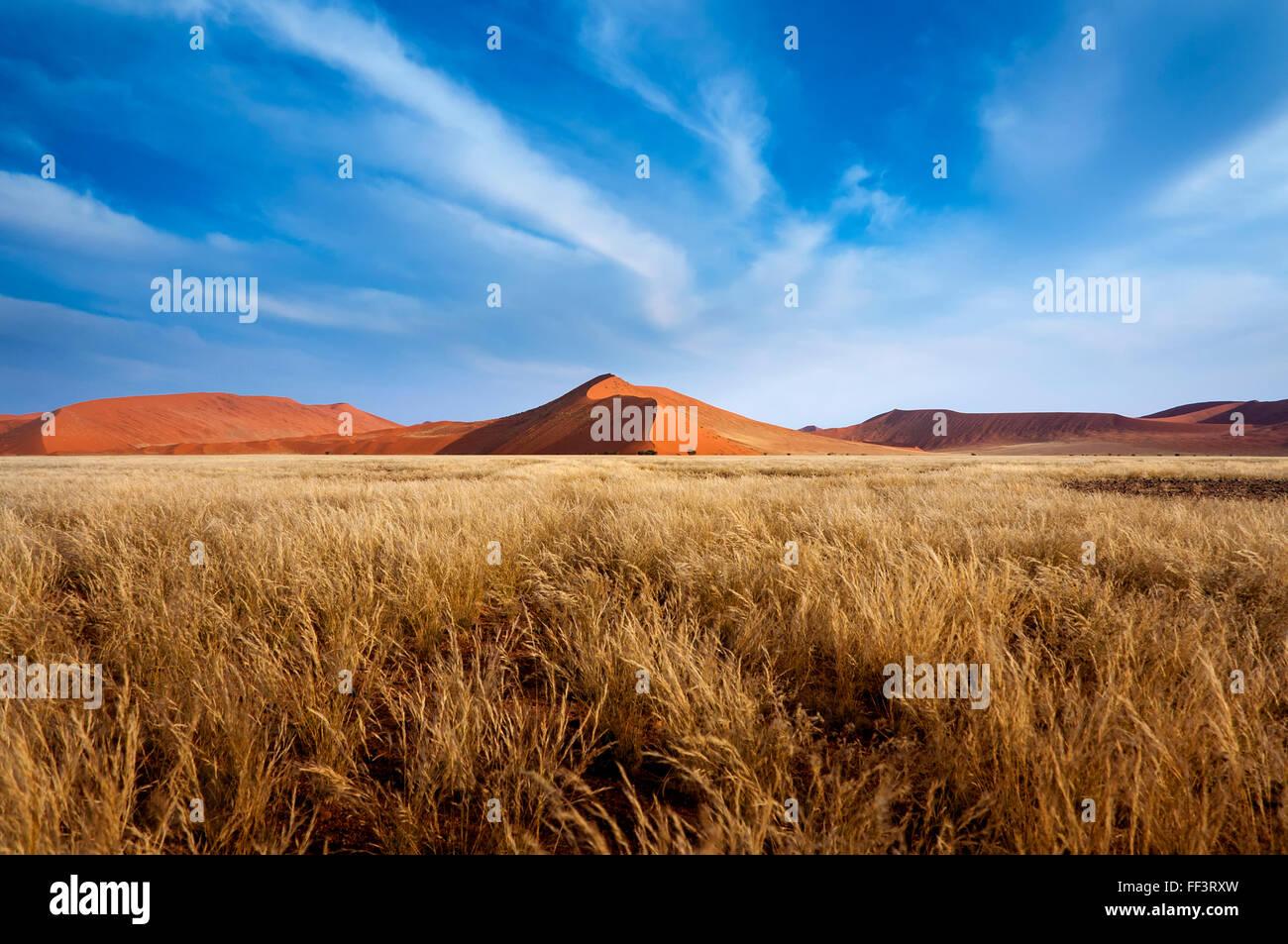 Roten Dünen im Sossusvlei im Namib-Wüste, Namibia Stockbild