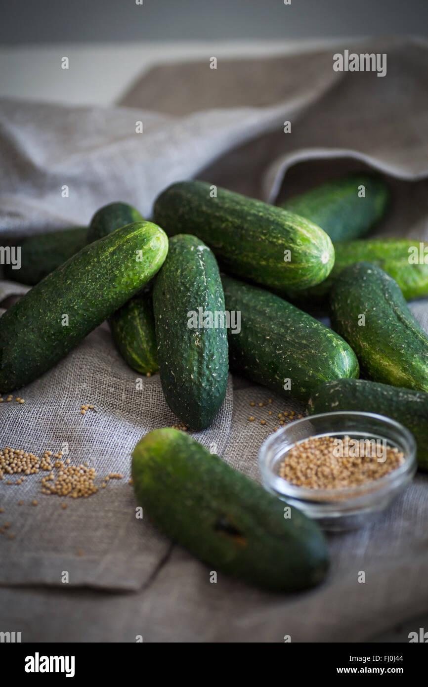 Gurken und Senf Samen als Zutat für pickles Stockbild