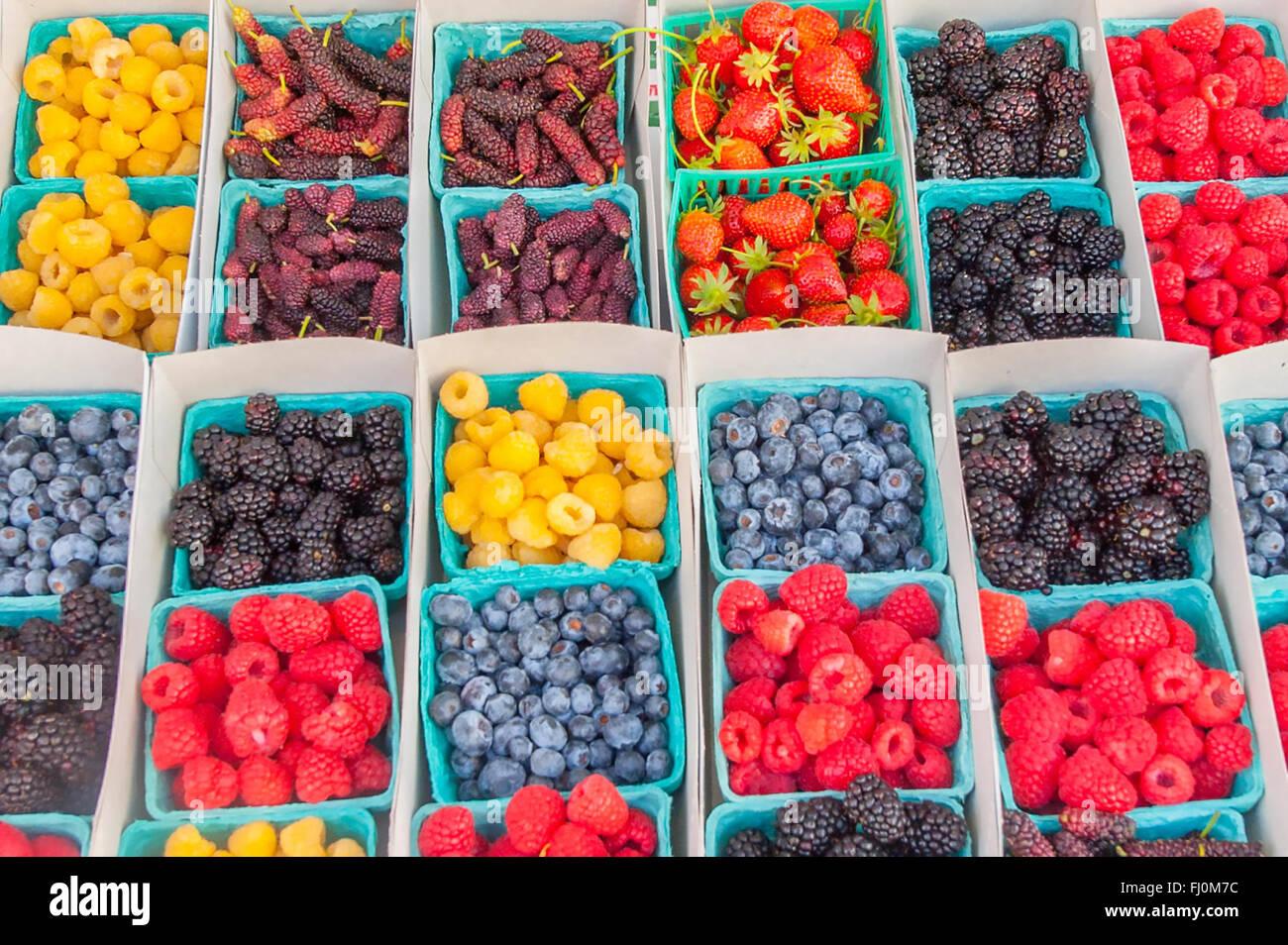 Nahaufnahme von Beeren in Pint Container an einem lokalen Farm Stand / Bauernmarkt in Santa Monica, Kalifornien Stockbild