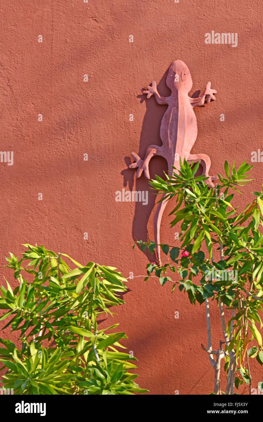 Stein Gecko an einer Hauswand, Madagaskar, Ankify Stockbild