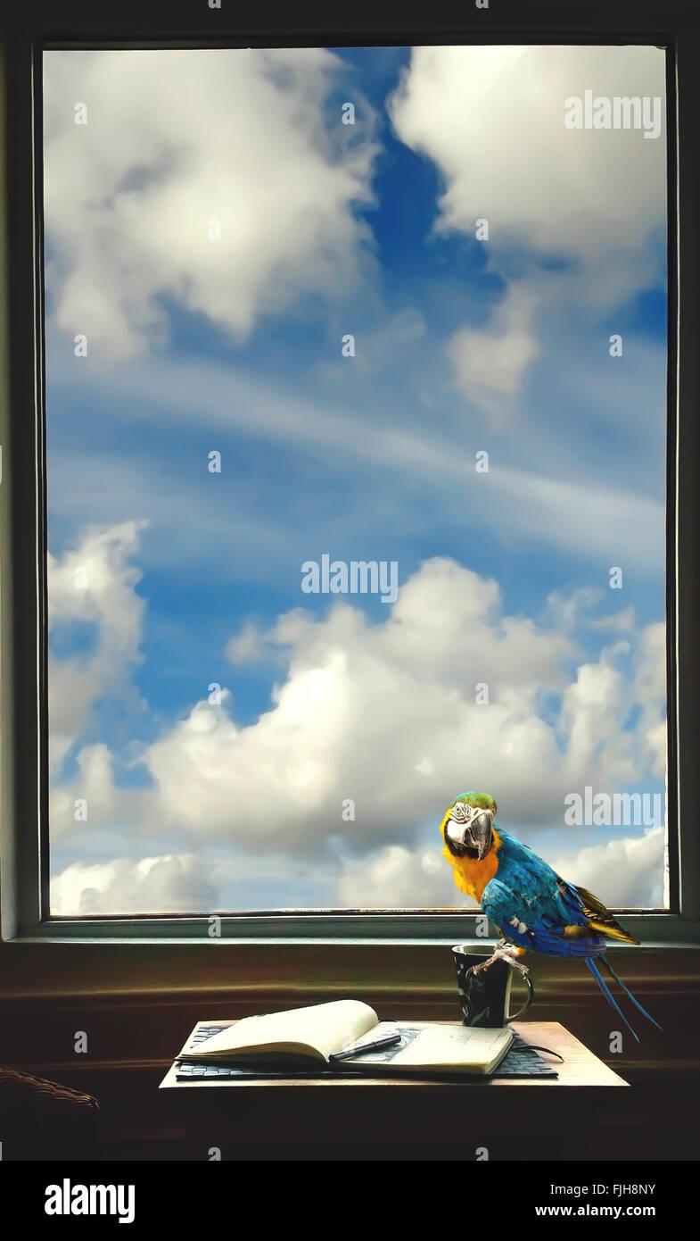 Schriftstellers Zimmer mit einem Notizbuch, Stift, Tasse und Papagei auf dem Tisch am Fenster Stockbild