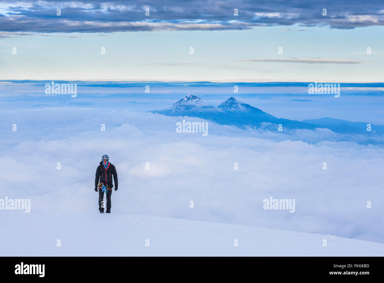 Bergsteiger auf den letzten 20m auf den 5897m Gipfel des Cotopaxi Vulkan, Provinz Cotopaxi in Ecuador, Südamerika Stockbild