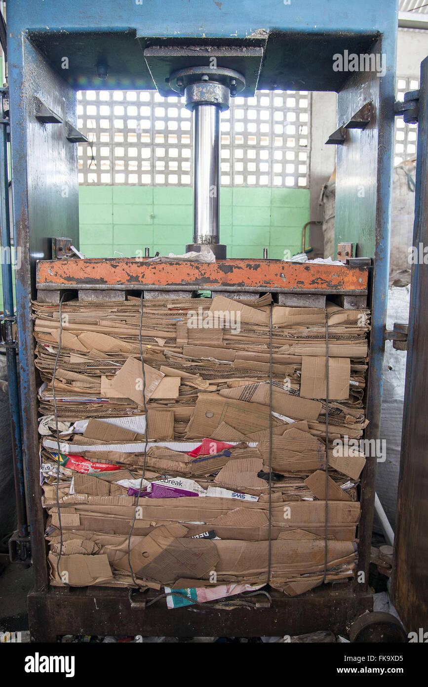 Pappe für das recycling gedrückt Stockbild