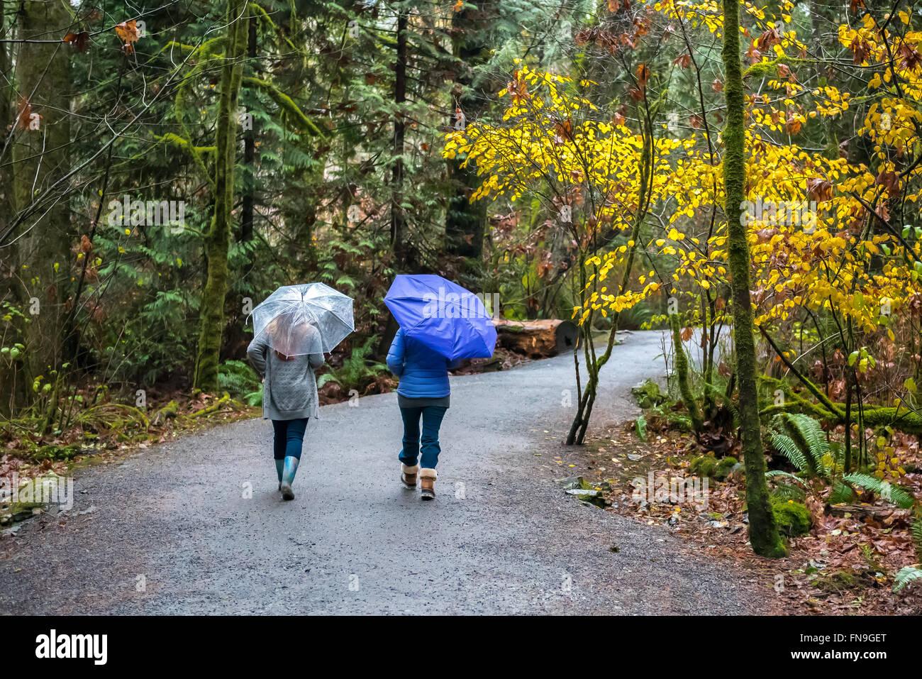 Zwei Frauen Joggen im Regen mit Sonnenschirmen, Victoria, Britisch-Kolumbien, Kanada Stockbild