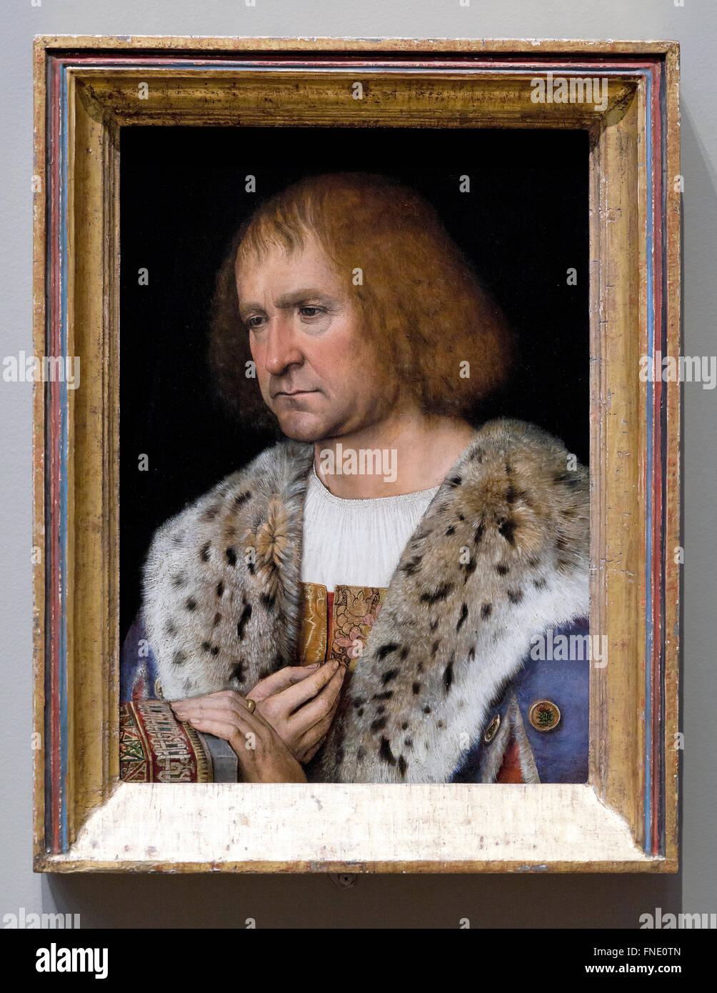 Portrait von Diego de Guevara von Michel sittow, circa 1515 - Smithsonian National Gallery, Washington, Dc, USA Stockbild