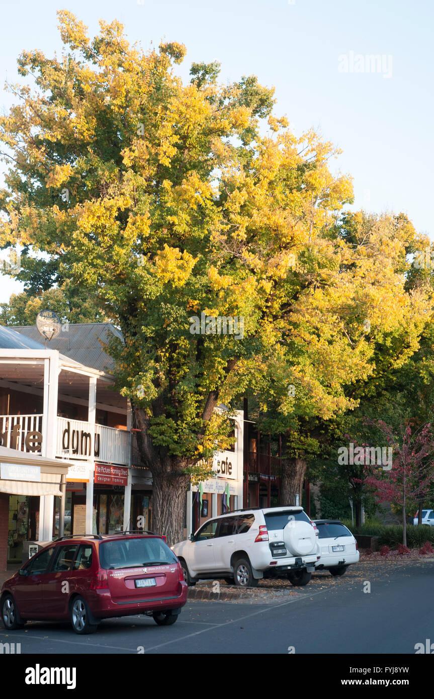 Straßenbild in den Öfen Tal Bright, nordöstlichen Victoria, Australien Stockbild