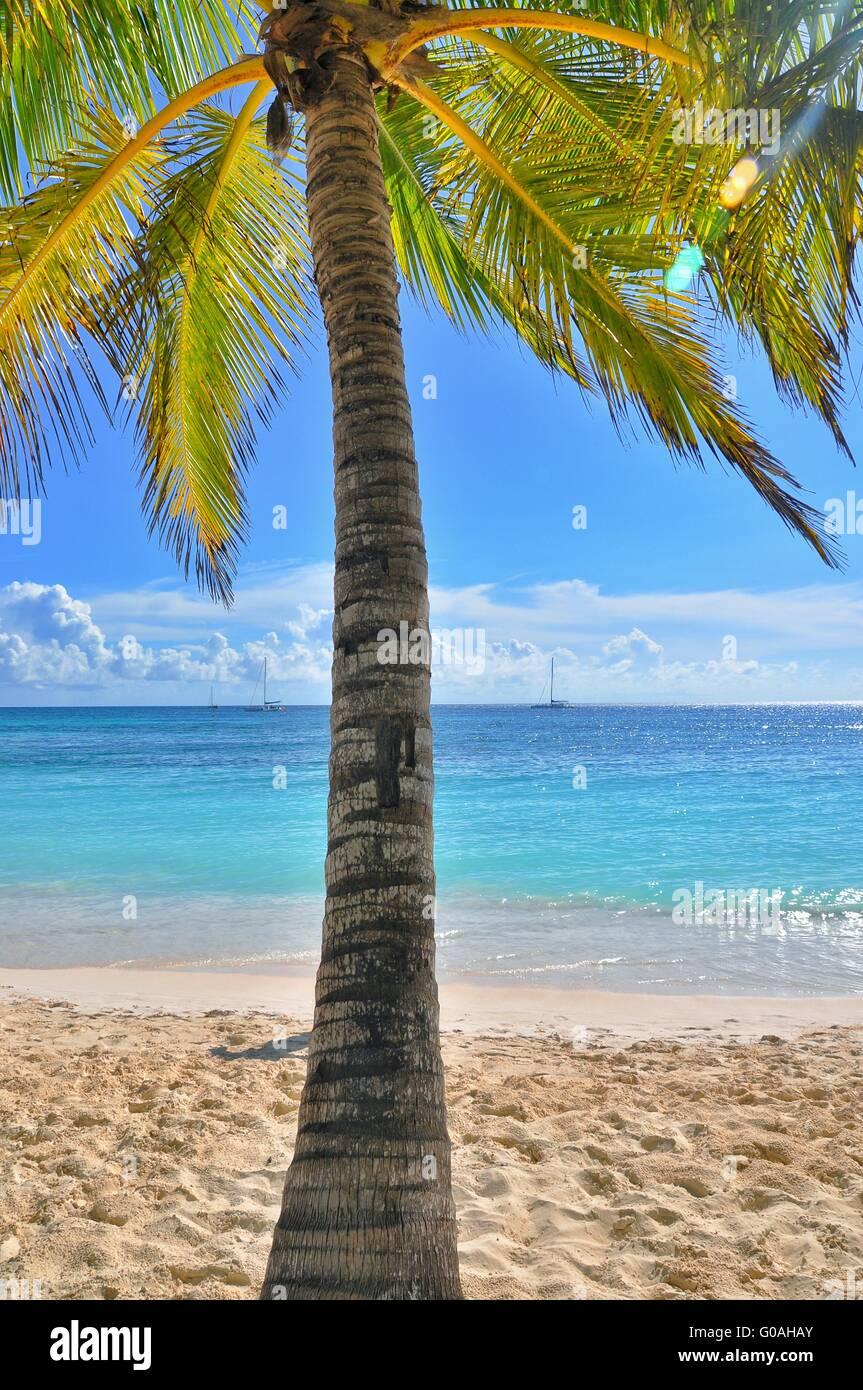 Karibik Meer Stockbild