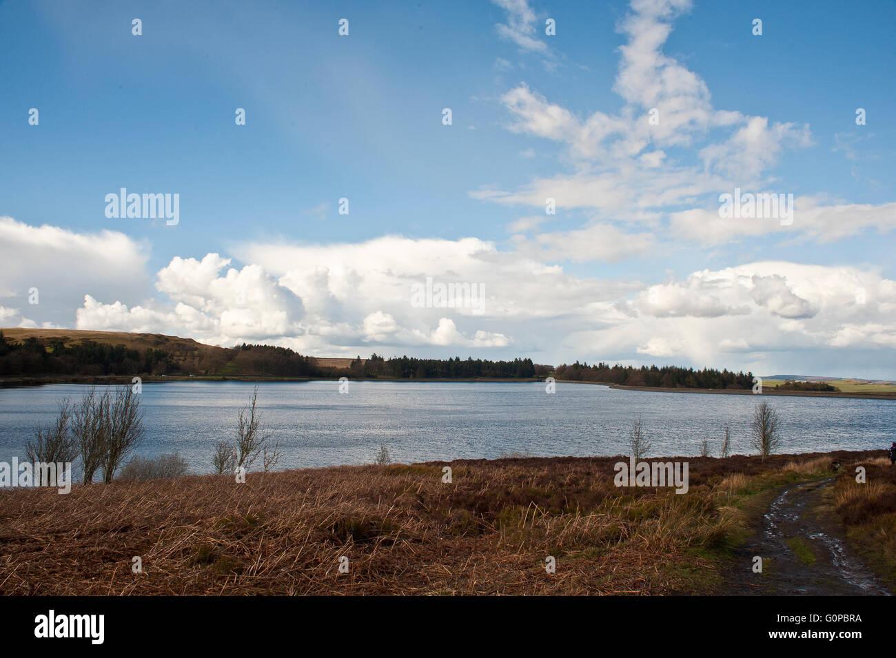 Redmires, Reservoir, Sheffield, Mauren, Yorkshire Wasser, Trinkwasser, h2o, Natur, Tierwelt, dam, Moor, Hochland Stockbild