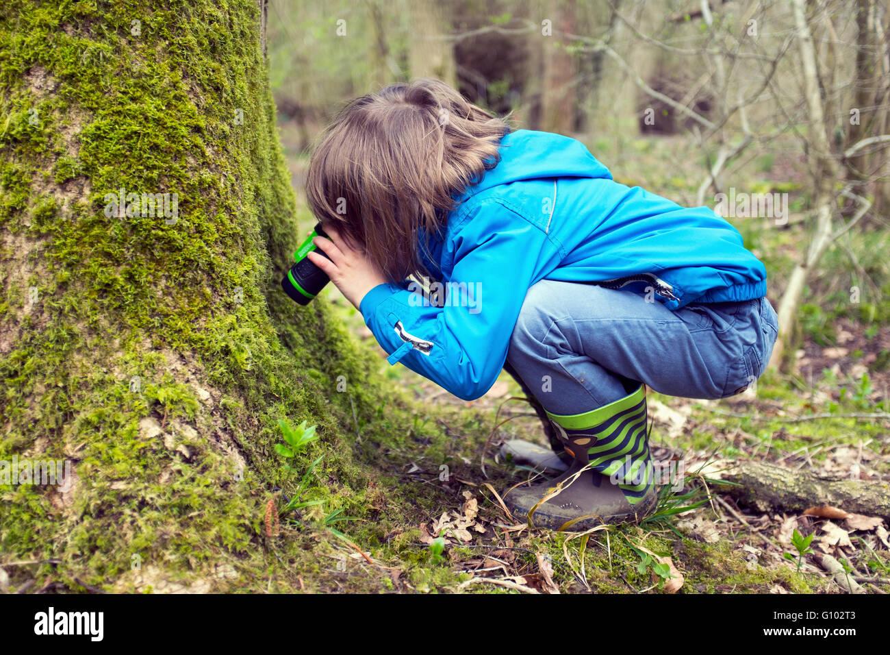 Kleiner Junge erkunden den Wald Stockbild