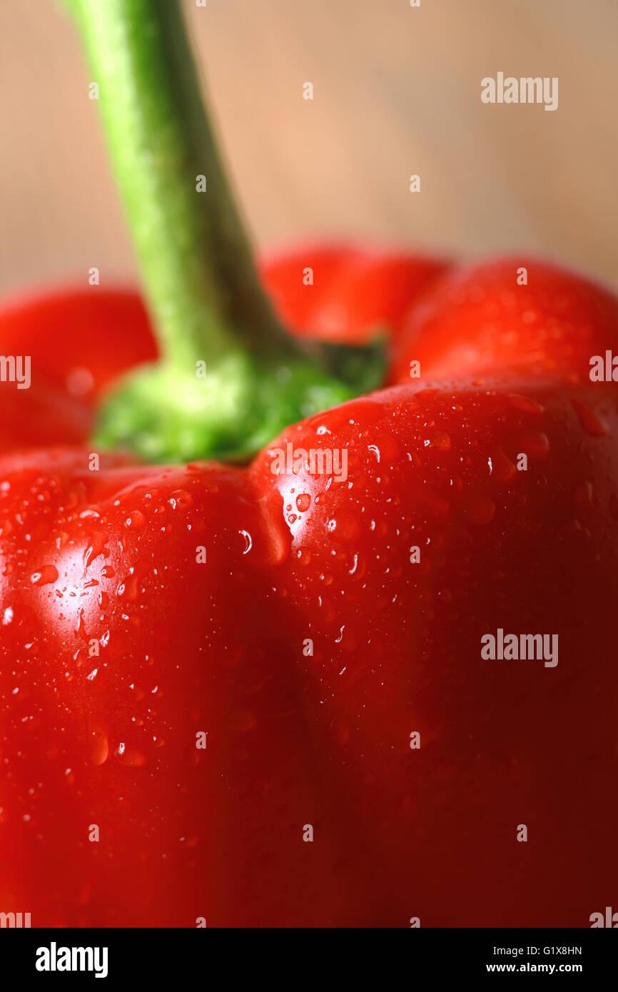 Makrofoto des gewaschenen Paprika. Stockbild