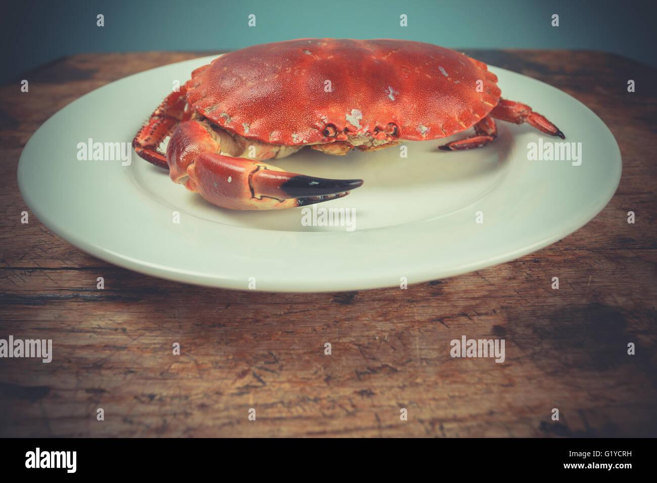 Eine rote Krabbe auf einem Teller Stockbild