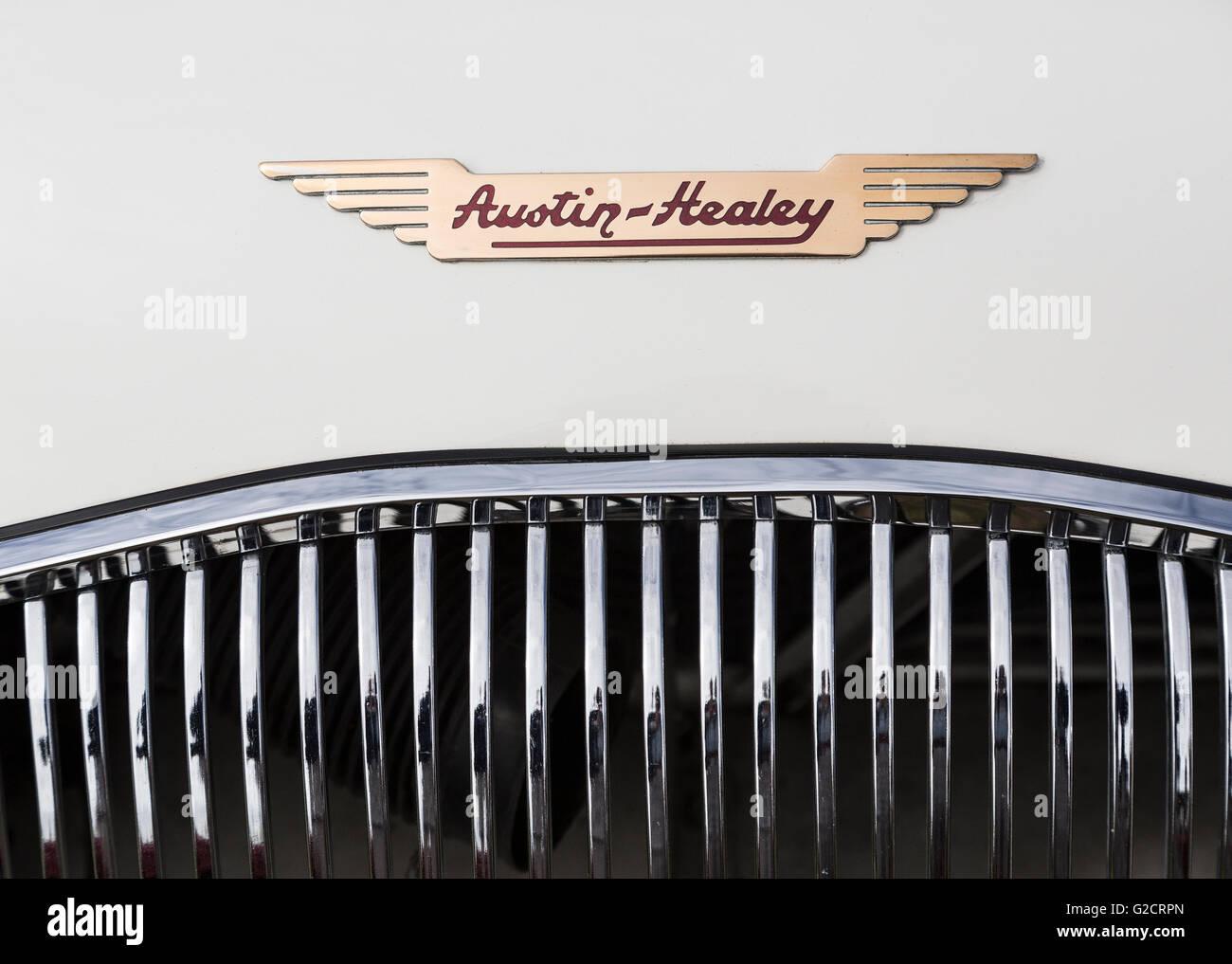 Austin-Healey-Emblem auf der Motorhaube des klassischen Oldtimer Rallye, Abergavenny, Wales, UK Stockbild