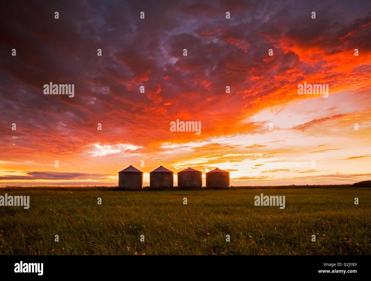 Korn-Lagerplätze bei Sonnenuntergang, in der Nähe von Carey, Manitoba, Kanada Stockbild