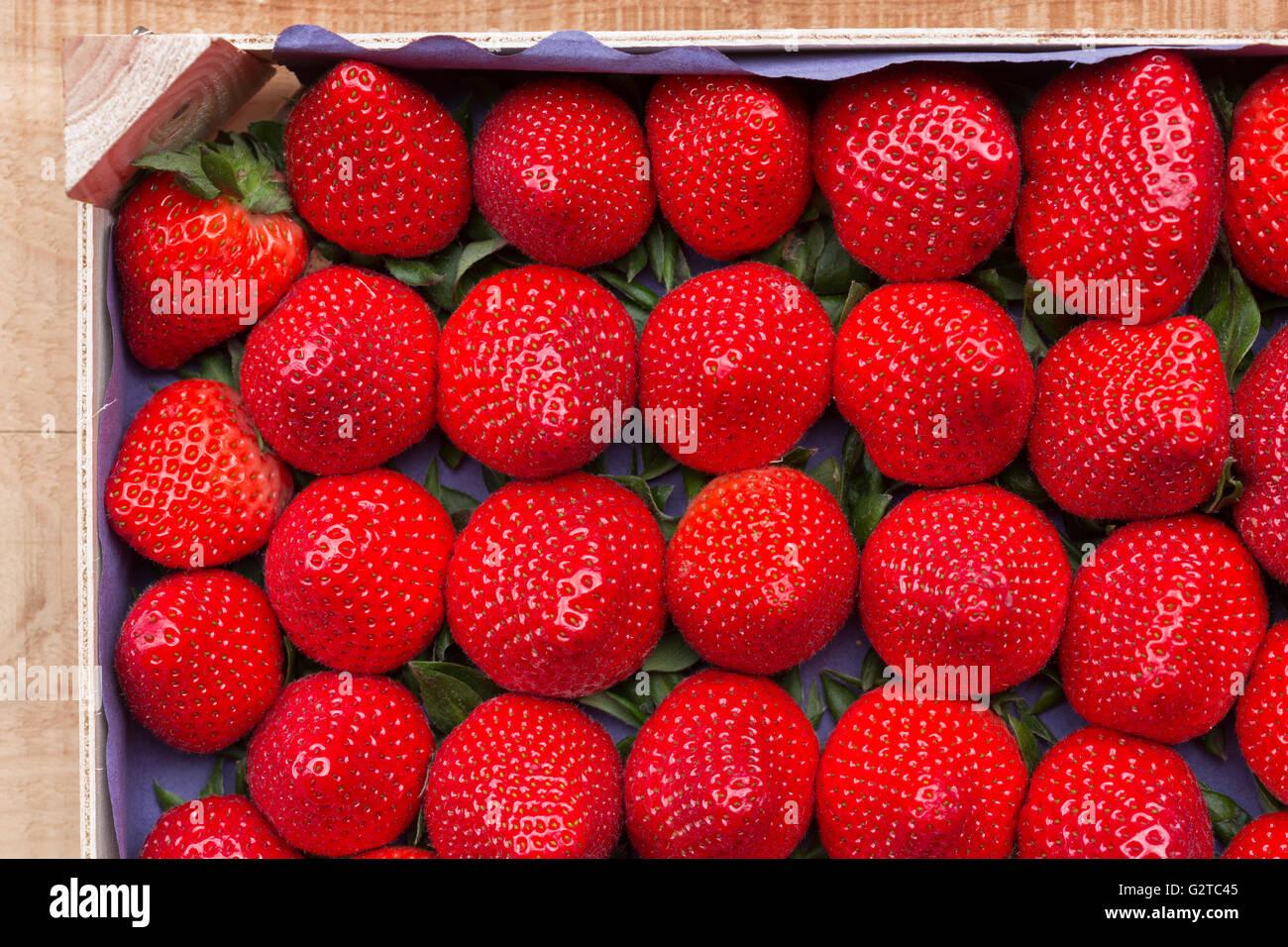 Erdbeeren in einem Lebensmittel-Behälter Stockbild