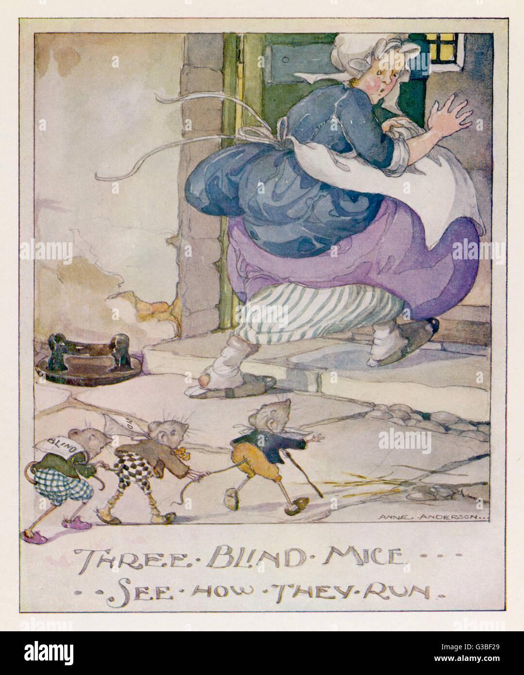 """Three blind Mice, see how they run..."" Stockbild"