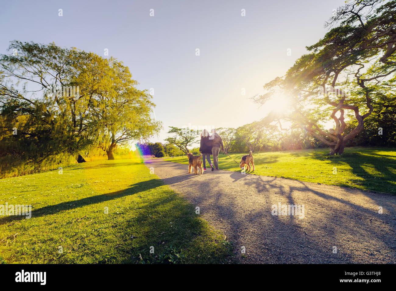 Schweden, Skane, Malmö, Malmö Folkets Park, Mid-Adult paar mit Hunden Stockbild