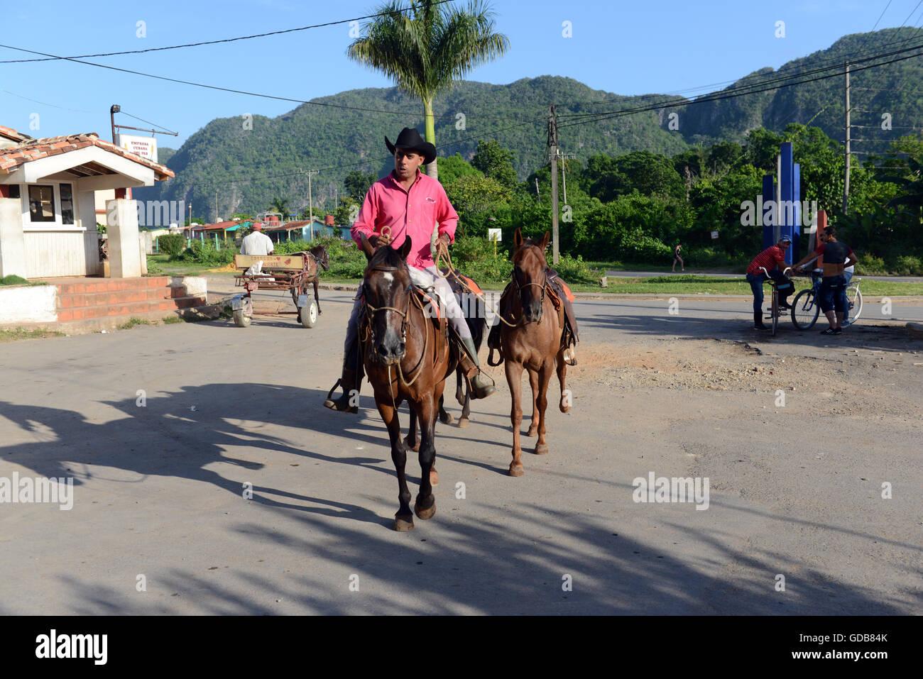 Eine kubanische Rancher reitet sein Pferd. Stockbild