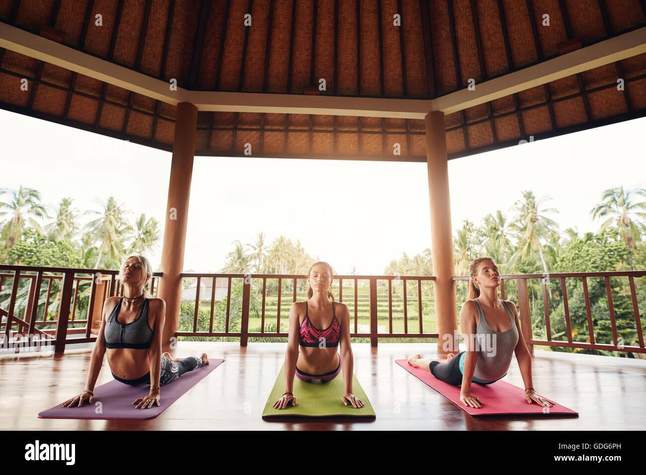 Drei Frauen üben die Cobra stellen während der Yoga-Kurs an der Health Center. Gruppe von jungen Menschen, Stockbild