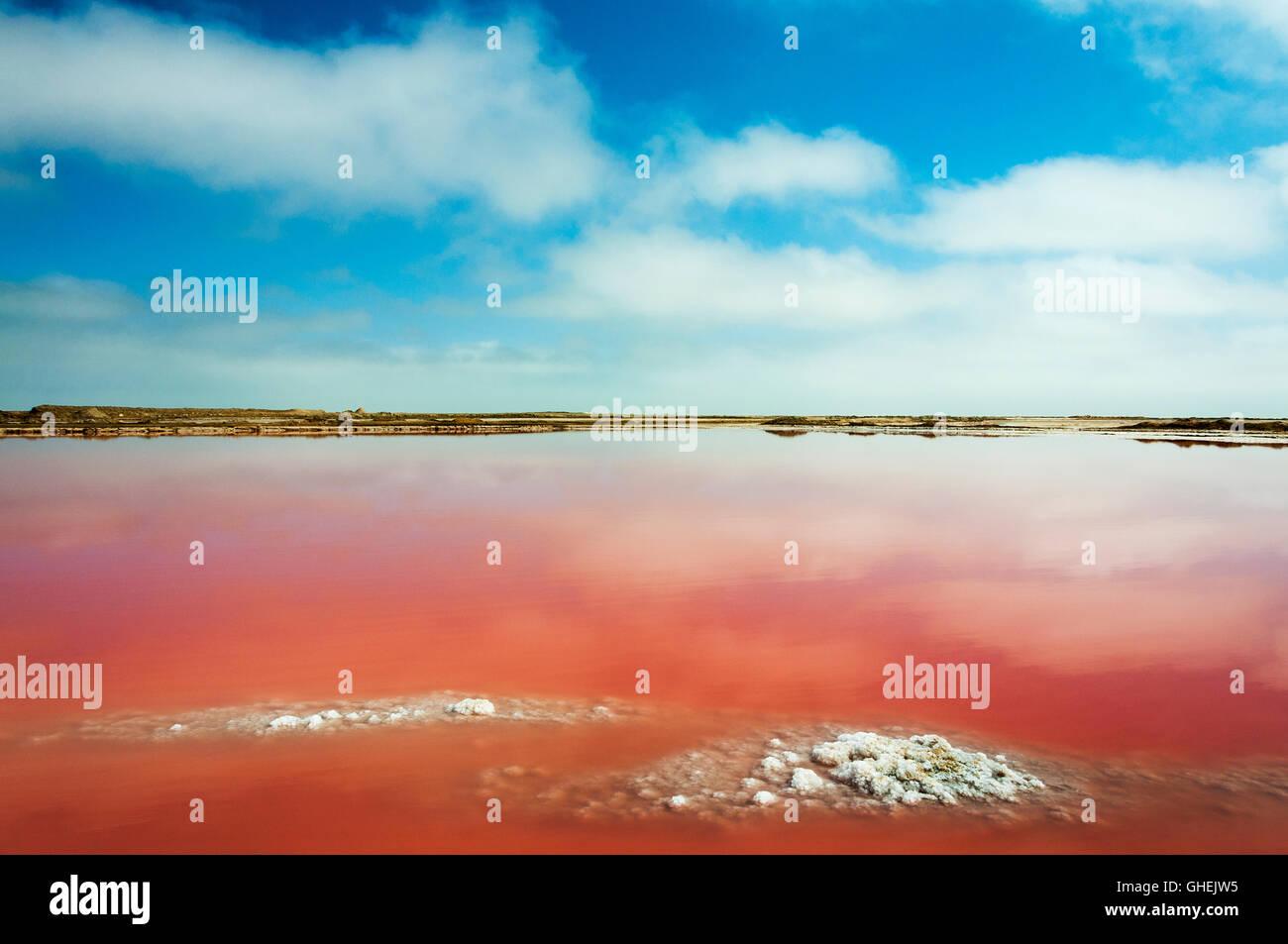 Einem roten Salzsee in der Nähe von Walvis Bay in Namibia, Afrika Stockbild