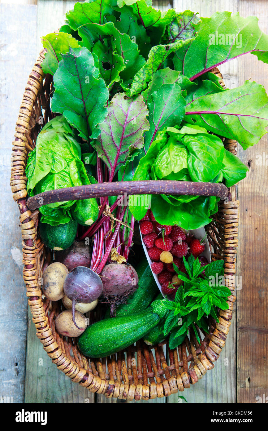 Korb mit frisch gepflückten Gemüse Stockbild