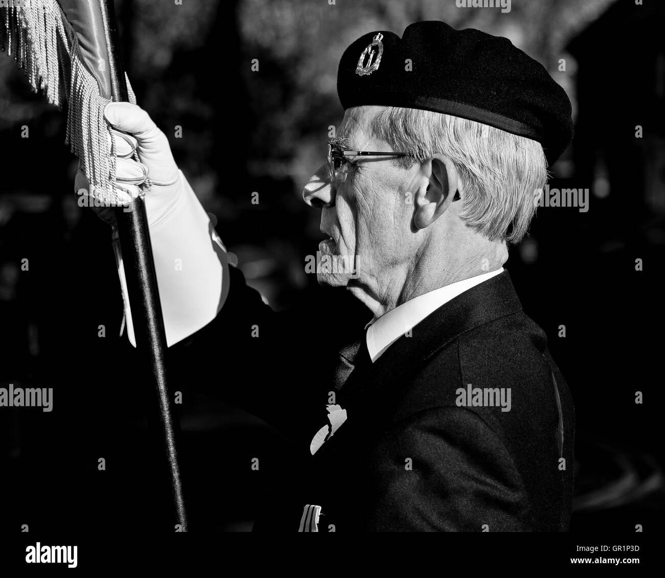 Remembrance Sunday Militärveteranen parade Stockbild