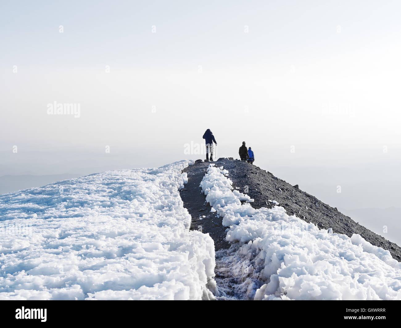 Wandern auf dem Trek, Mount Rainier Stockbild