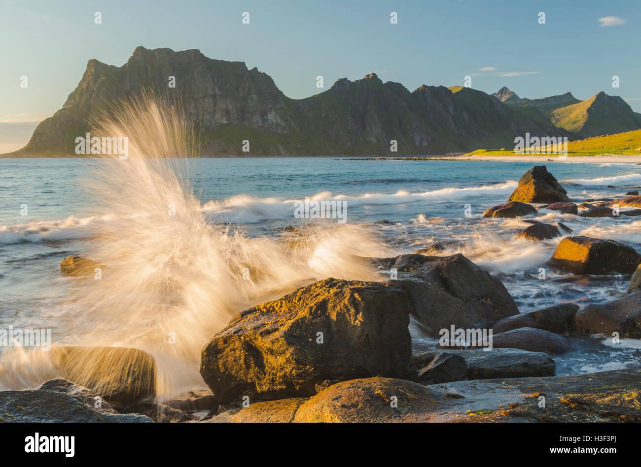 Felsen im Abendlicht mit warmen Lichtschein, Wellen ans Ufer und spritzt auf den Felsen, Uttakleiv, Lofote Stockbild