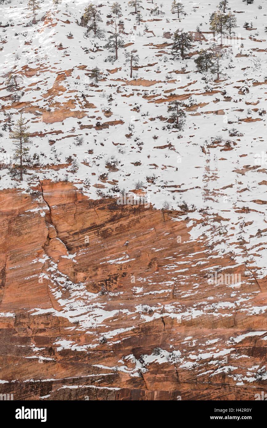 Schnee bedeckt die roten Felsen von Zion National Park in Utah Stockbild