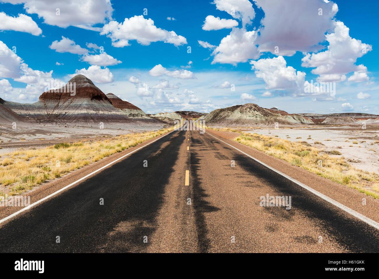Leere Straße in der Wüste im Bundesstaat Arizona, USA; Konzept für Roadtrip und Reisen in Amerika Stockbild