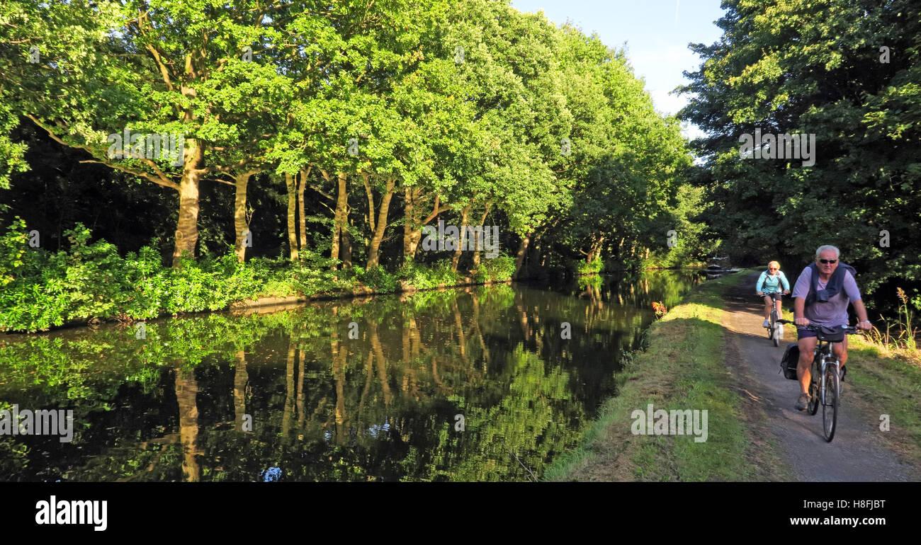Laden Sie dieses Alamy Stockfoto Bridgewater Kanal Runcorn im Sommer, am Ufer Radfahrer, Cheshire, England, UK - H8FJBT